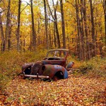 decaying old car in fall forest