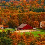 fall scene - barn
