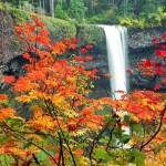 waterfall in fall