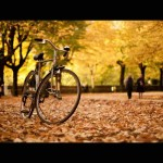 bike fall leaves
