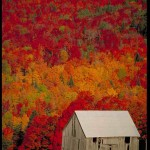 fall scene barn