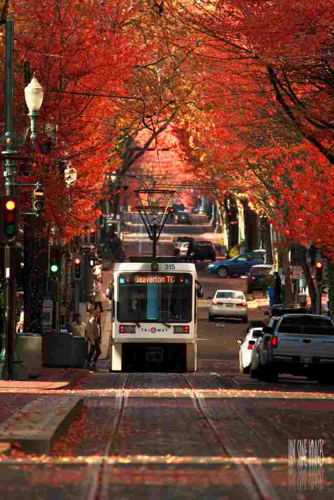 colorful fall street - streetcar