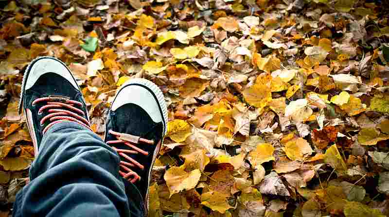 tennis shoes fall leaves