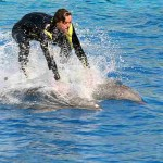 man riding two dolphins
