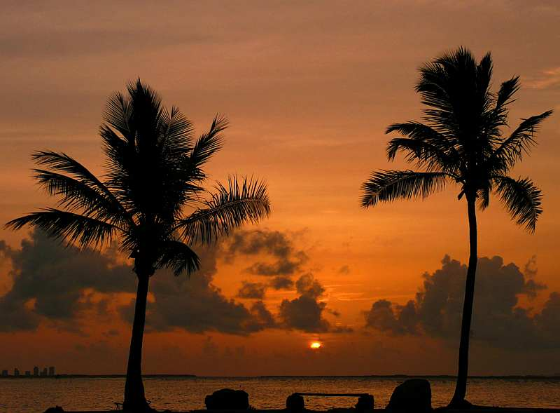 46-biscayne-bay-florida-sunrise