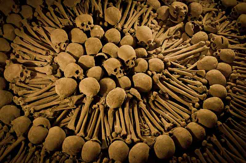 Arrangement of Bones in Iglesia de San Francisco